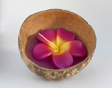 Plumeria flower candle in coconut shell photo