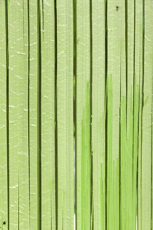 Green bamboo natural pattern vertical background photo