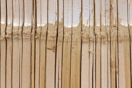 Bamboo natural texture background photo