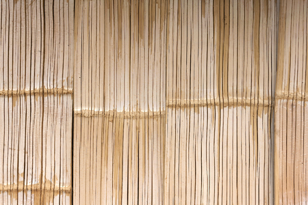 Colour bamboo texture wall background photo