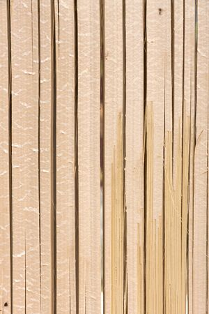 Natural color bamboo texture vertical background photo