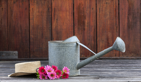 watering pot: Metal watering pot set with hat on flower and space on red wood wall