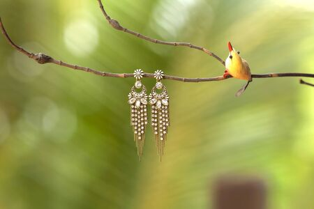 interesting: Flower earring on dry branch in centre green background