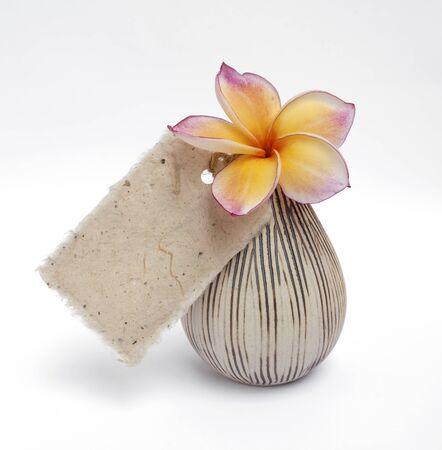 plumeria flower: Plumeria flower in ceramic vase with paper tag