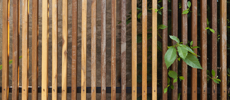 wooden fence: Wooden fence background banner style