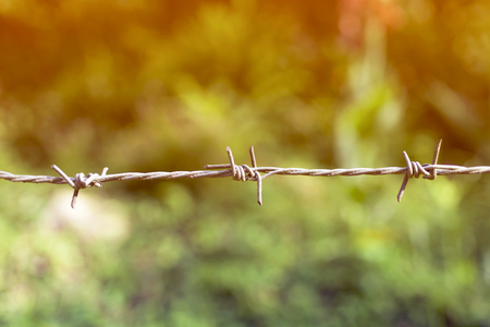 prisoner of war: Blur vintage tone background close up rusty barb wire fence