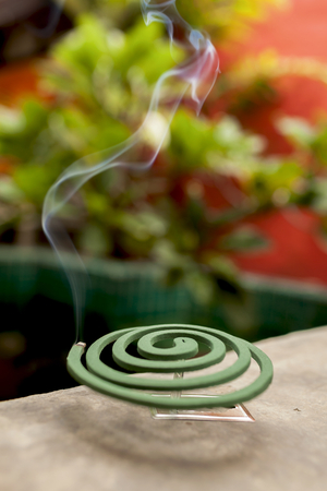 coil: Burning mosquito repellent coil Stock Photo