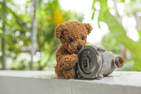 wet bear: Wet Teddy bear and old water meter