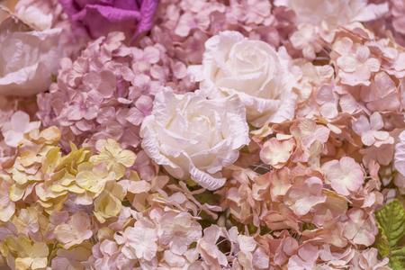 papel filtro: dulce de color de Hortensia y rosa blanca con filtro, Flor de papel de fondo