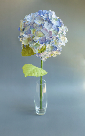 Hydrangea paper flower vintage style stock photo picture and 54034875 hydrangea paper flower on grey background mightylinksfo