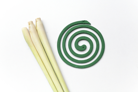 repellant: Fresh lemongrass and a green mosquito repellant on white background