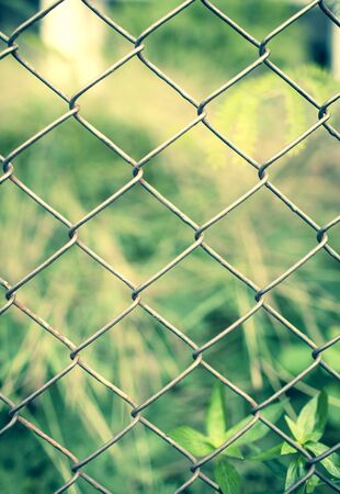 wire fence: Wire fence with blur green garden, vintage tone style