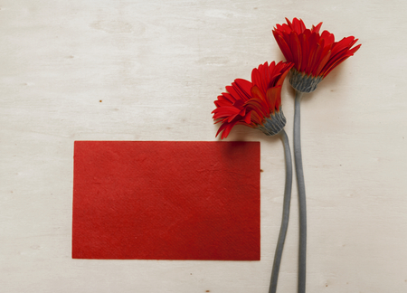 daisie: Red card with red daisie flower vintage style