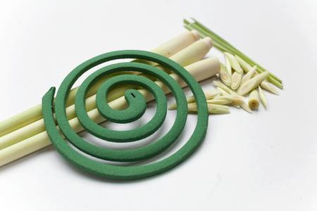 bobina: espiral para mosquitos hierba de limón natural Foto de archivo