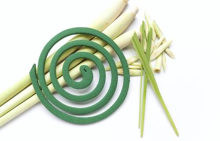 anti season: Green mosquito coil on fresh lemongrass Stock Photo