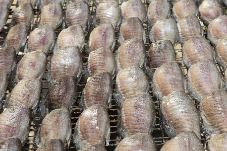 damsel: Dried salted damsel fish, drying in the sun