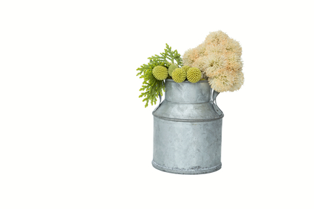 Tin pot and fresh flower and leaves on white background
