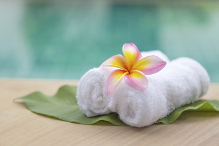 hand towel: White hand towel roll with plumeria flower at spa pool Stock Photo