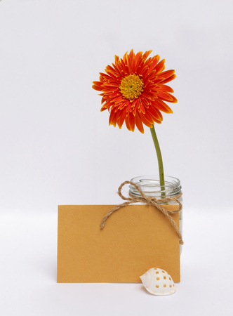 writ: Orange daisy flower and yellow paper card on white background