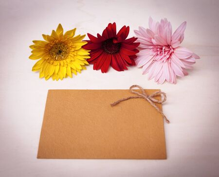 writ: Colorful flower and blank card with pink filter effect