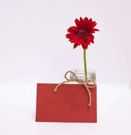 writ: Red daisy flower and blank red paper card on white background Stock Photo