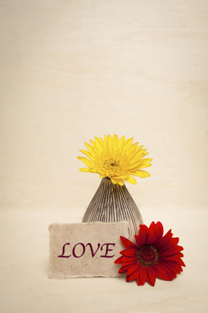 writ: Valentine concept, Colorful daisy flower with love note Stock Photo