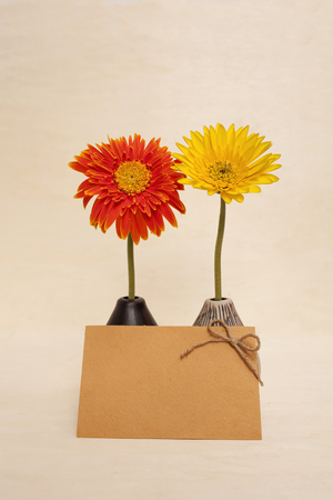 writ: Daisy flower and yellow paper card on wood background