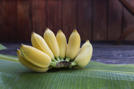 Yellow cultivated banana on green leaf, outdoor day light