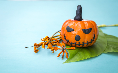 is green: Halloween concept, funny Halloween pumpkin on green leaf with dry yellow flower with space on blue background