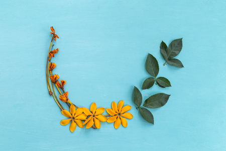 Yellow flower with green leaves arrangement on blue background Stock Photo