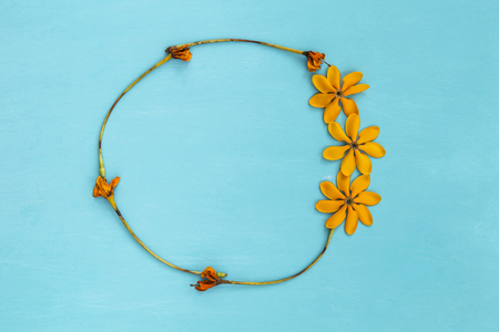 Round yellow flower frame on blue background
