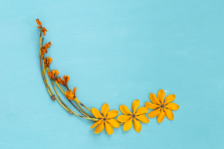 Beautiful yellow flower arrangement on blue background Stock Photo