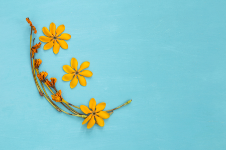 Yellow fresh and dry flower arrangement on blue wood texture background Stock Photo
