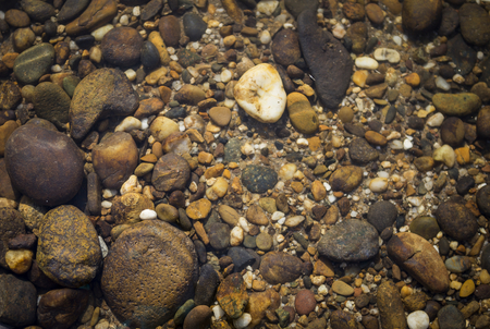 Nature concept background of stone under clear river water