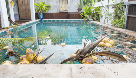 Dirty swimming pool, tropical pool, dirty pool water Stock Photo