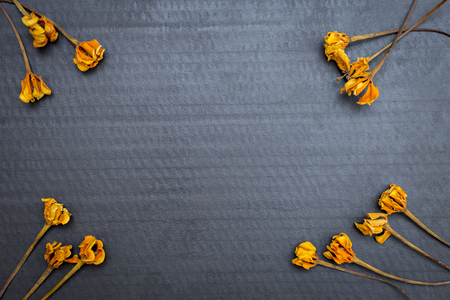 Dry yellow flower on black paper texture background, blank black paper card vintage style background