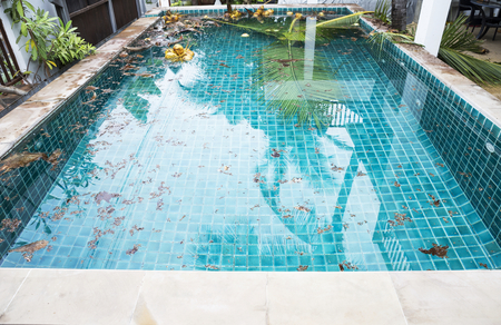 Swimming pool problem and service concept, dirt from coconut tree falling into swimming pool, tripical outdoor swimming pool Imagens