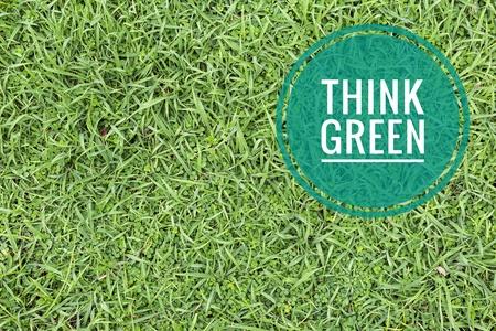 Think green logo on Fresh green grass background, natural concept background Zdjęcie Seryjne