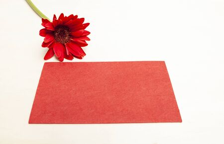 Blank red paper card with red flower isolate on white background, greeting card idea