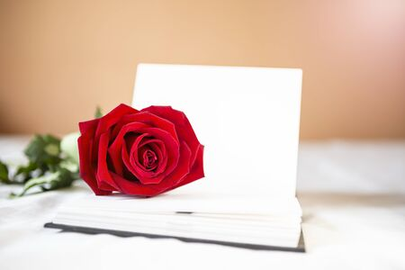 Beautiful fresh red rose on blank white notebook over blurred background, valentine gift, love and romance concept background
