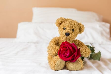 Cute little brown fluffy teddy bear holding fresh red rose in the bed, morning day light, love and romance concept, valentine background idea Stok Fotoğraf