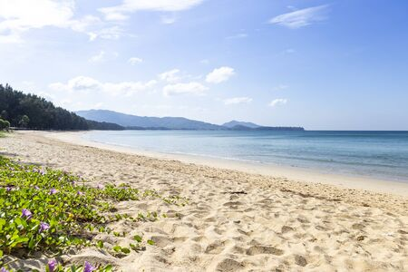 Beautiful day at the beach, summer outdoor day light, Phuket Island in Thailand, peaceful and clean beach, sea view