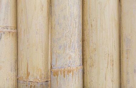 Closeup dry bamboo wood background, outdoor day light, nature texture background
