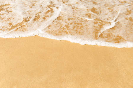 White wave on fine sand beach, summer outdoor day light, environmental and nature concept