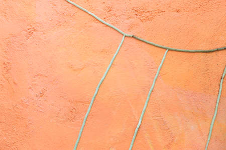 Orchid roots on orange cement wall background, blank cement wall with root pattern Stok Fotoğraf