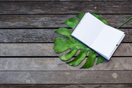Open notebook on green leaf with space on old wooden floor, outdoor day light, education concept or eco product