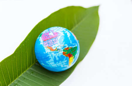 Earth day concept, plastic global ball on fresh green leaf isolate on white background Stok Fotoğraf