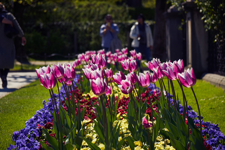 Mirabell palace and garden in the spring Salzburg, Austria Stock Photo