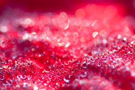 kropla deszczu: Zamknij się krople na czerwonym liściu