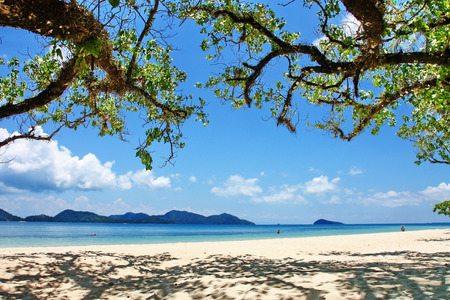 water s edge: Trees and beach at Koh Chang Island,Thailand Stock Photo